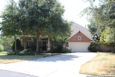 San Antonio Single Family Home New: 24803 White Creek