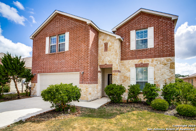 San Antonio Single Family Home New: 27406 Trinity Cross