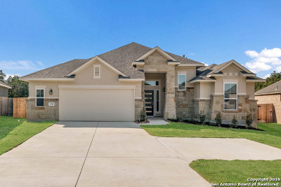 New Braunfels Single Family Home New: 578 Mission Hill Run