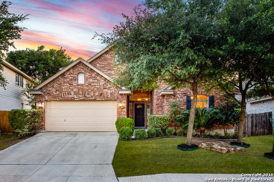San Antonio Single Family Home New: 24607 Alamosa Falls