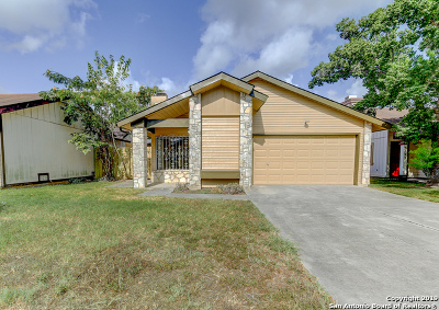 Bexar County Single Family Home New: 3527 Lake Tahoe St