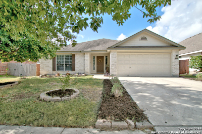 New Braunfels Single Family Home New: 2414 Dove Crossing Dr