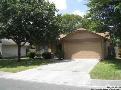 San Antonio Single Family Home New: 9525 Autumn Shade