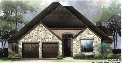 New Braunfels Single Family Home New: 1161 Hammock Glen