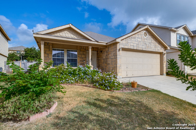 San Antonio Single Family Home New: 219 Fontana Albero