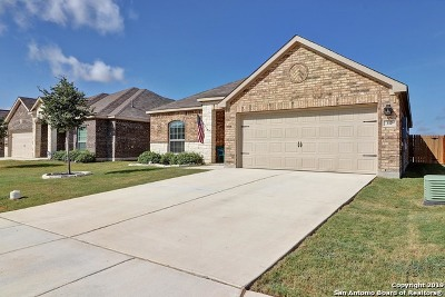 New Braunfels Single Family Home New: 317 Azalea Way