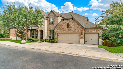 San Antonio Single Family Home New: 24062 Alpine Lodge