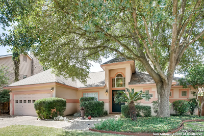 San Antonio Single Family Home New: 40 Courtside Cir