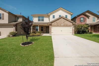 San Antonio Single Family Home New: 449 Eastern Phoebe