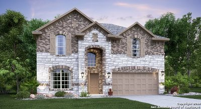 New Braunfels Single Family Home New: 2432 Kylie Way