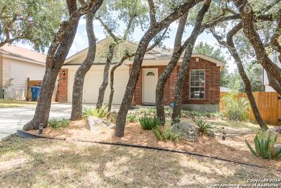 San Antonio Single Family Home New: 1210 Lion King