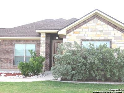 Medina County Single Family Home For Sale: 17902 Laneys Catch