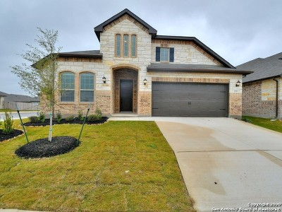 San Antonio TX Single Family Home New: $340,425