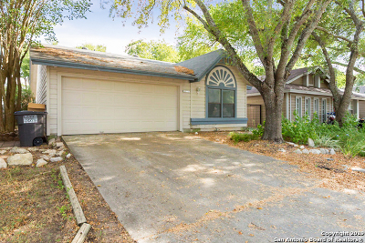 San Antonio Single Family Home New: 3934 Chimney Springs Dr