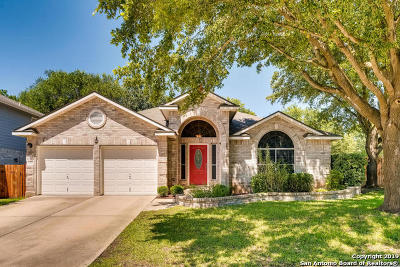 Cibolo Single Family Home New: 236 Cordero Dr