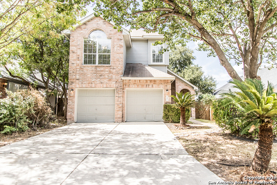 San Antonio TX Single Family Home New: $194,900