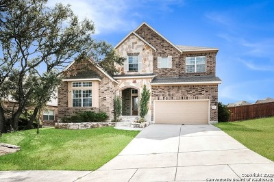 San Antonio Single Family Home New: 28827 Sopris Ln