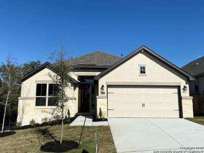 San Antonio Single Family Home New: 28530 Shailene Drive