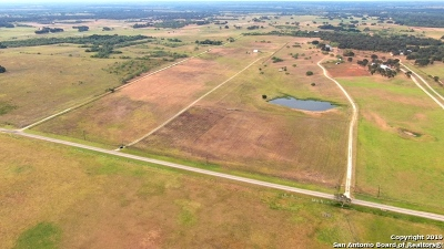 Floresville Farm & Ranch For Sale: 3173 Fm 1922