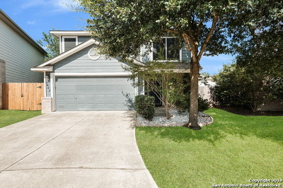 San Antonio Single Family Home New: 7423 Painter Way