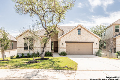 New Braunfels Single Family Home New: 944 Carriage Loop