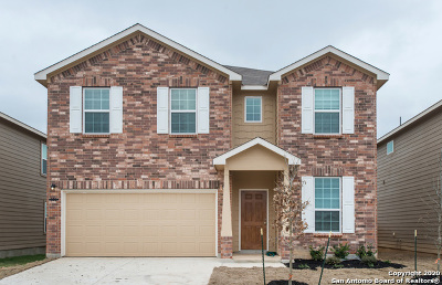 New Braunfels TX Single Family Home New: $243,374