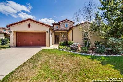 San Antonio Single Family Home New: 22402 Viajes