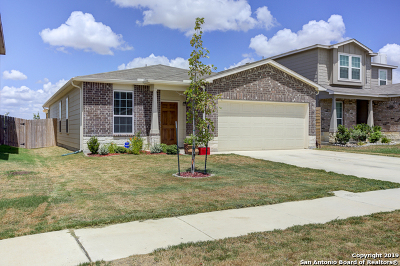 New Braunfels Single Family Home New: 134 Texas Thistle
