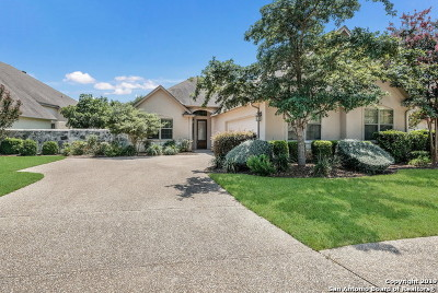 San Antonio Single Family Home New: 210 Garden Hill