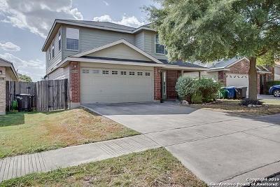 San Antonio Single Family Home New: 539 Lynx Mtn