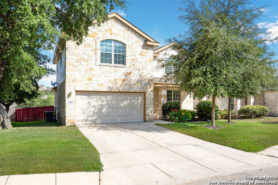 San Antonio Single Family Home New: 25807 Beautyberry