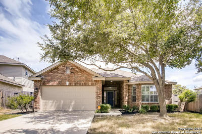 Helotes Single Family Home New: 14510 Tioga Bend