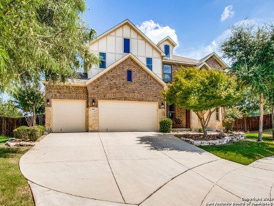 Boerne Single Family Home New: 8003 Colin Chase