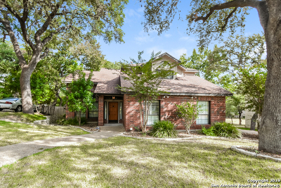 San Antonio Single Family Home New: 1231 Vista Del Rio