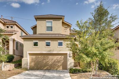 San Antonio TX Single Family Home New: $290,000
