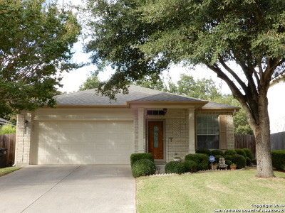 San Antonio Single Family Home New: 21426 Encino Lookout