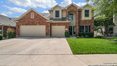 Guadalupe County Single Family Home New: 321 Hilton Dr