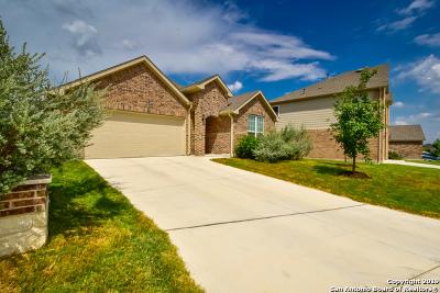 San Antonio Single Family Home New: 13943 Persimmon Cove