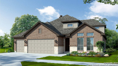 Cibolo Single Family Home New: 313 Waterford