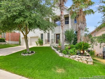 Stone Oak Single Family Home For Sale: 519 Lorimor Ct