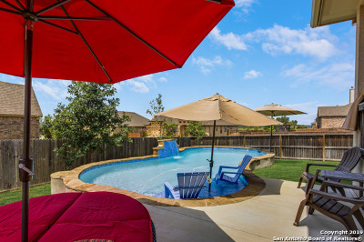 Boerne Single Family Home For Sale: 29043 Porch Swing