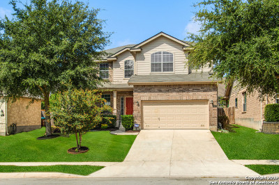 Alamo Ranch Single Family Home For Sale: 6107 Palmetto Way