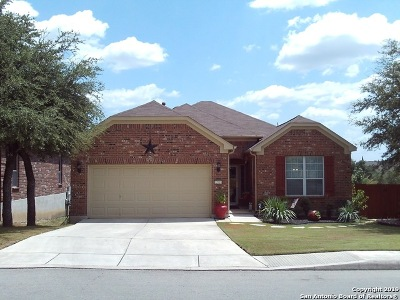 Alamo Ranch Single Family Home For Sale: 12018 Elijah Stapp