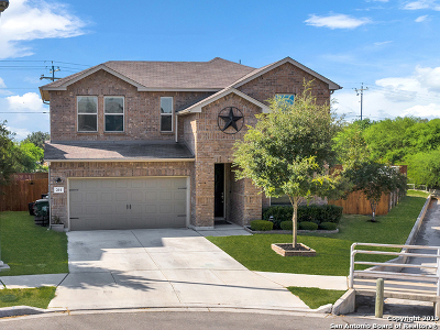 Cibolo Single Family Home For Sale: 201 Heritage View