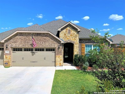 Guadalupe County Single Family Home For Sale: 2733 Ridge Path Dr