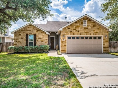 Atascosa County Single Family Home For Sale: 319 Valley Forge