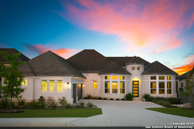 Single Family Home For Sale: 24047 Azul Dawn