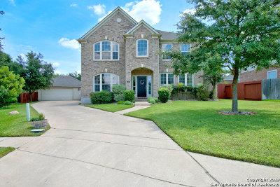New Braunfels Single Family Home Active Option: 528 Diamond Oak