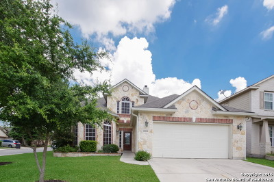 Helotes Single Family Home For Sale: 13102 Balbach Forest
