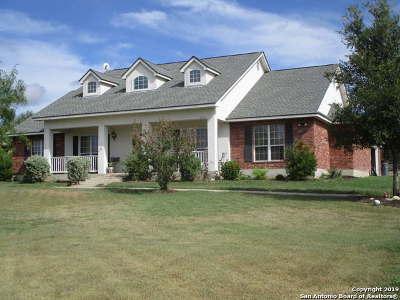 Medina County Single Family Home For Sale: 617 County Road 367